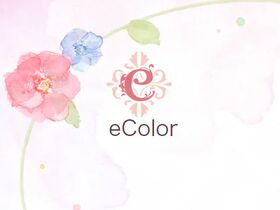 eColor(イーカラー)